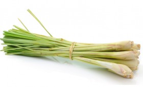 Lemongrass olive oil